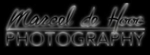 illustratie: logo de Hoog, fotografie, vakfotograaf,