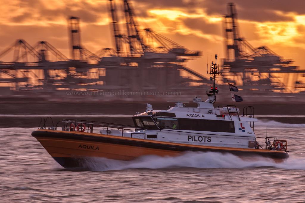 illustratie: Pilot, loodswezen, waterweg, snelle boot, schip, jet motor